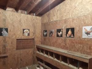 Chicken coop decor