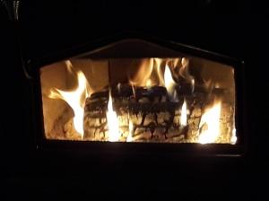 Wood stove burning